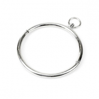 Stainless Steel Collar with Ring Cathedral S